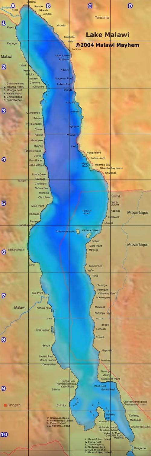 Lake Malawi Africa Map.Malawi Cichlids Malawi Species Profiles African Cichlids Lake